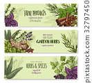 Vector banners set of natural spices and herbs 32797450