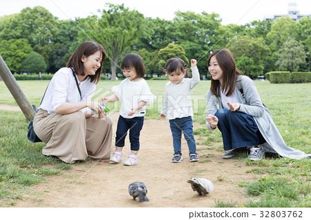 ความเป็นพ่อแม่,ดูแลลูก,พิราบ 32803762
