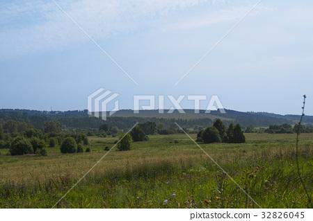 Beautiful Russian summer nature view 32826045
