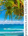 海 大海 海洋 32833657