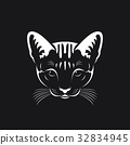 Vector of a cat face on black background, Pet. 32834945