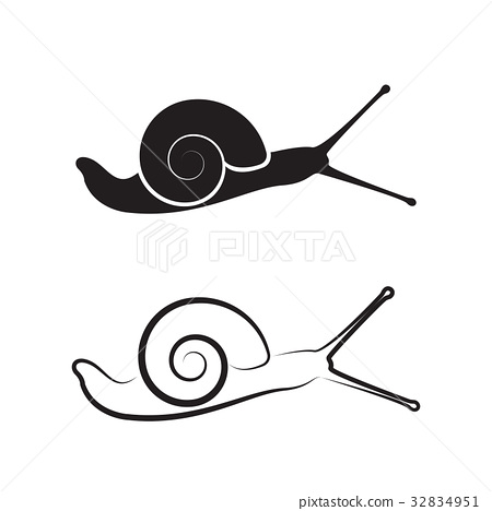 Vector of a snail on white background. Reptile. 32834951