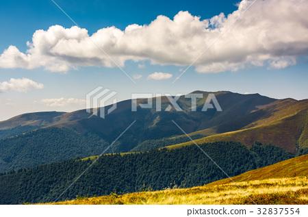 Carpathian Mountain Range in summer 32837554