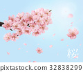 Cherry blossom elements 32838299