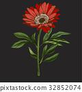 flower, leaves, stem 32852074