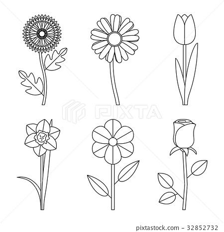 Flowers line drawings 32852732