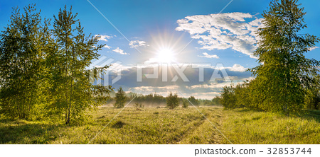 summer landscape with  meadow, forest, panorama. 32853744