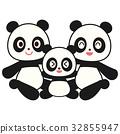 熊貓 父母和小孩 親子 32855947