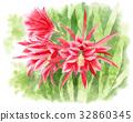 공작 선인장 꽃 (빨강) 32860345