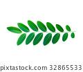 Green leaf on white background. 32865533