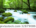 oirase mountain stream, mountain stream, mountain torrent 32879086