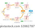 AGA头发循环股票向量 32882787