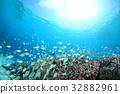 海洋 海 蓝色的水 32882961