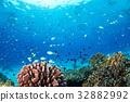 海洋 海 蓝色的水 32882992