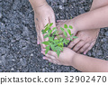 Two hands of a woman and a boy planting trees 32902470