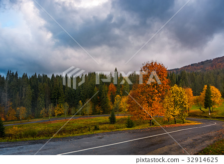 colorful foliage on serpentine in rainy weather 32914625