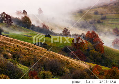 thick fog on hilly rural fields in autumn 32914638