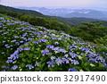 ดอกไม้,ไม้,โรงงาน 32917490