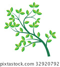 Isolated Green branch and leaf-Vector Illustration 32920792