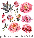 Watercolor Collection of Pink Peonies. 32922356