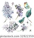 水彩畫 水彩 花朵 32922359
