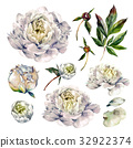 Watercolor Collection of White Peonies. 32922374