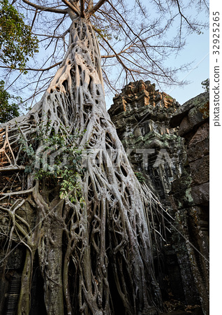 타프롬,시엠레아프,캄보디아 32925265