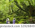 trekking, yakushima, forest 32926849