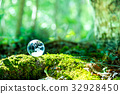 地球森林綠色環境生態圖像 32928450