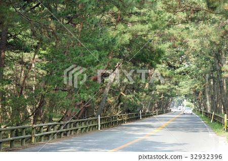 佐賀縣路線347 Nijinomatsubara線 32932396