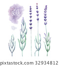 Watercolor lavender collection 32934812