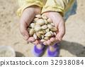 이시가키 섬에서 조개 잡이를하는 아이 32938084