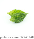 Momordica charantia isolated on white background 32943248