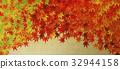 楓樹 紅楓 楓葉 32944158