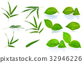 Green leaf on white background 32946226