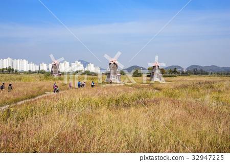 풍차,소래습지생태공원 32947225