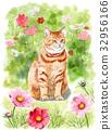 貓 貓咪 一隻貓 32956166