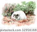 Sleeping cat on fallen leaves 32956168