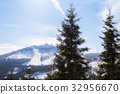 Winter landscape view to the mountain bis arber 32956670