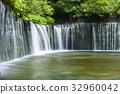 karuizawa, summer, clear stream 32960042