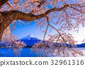 Mt. Fuji and Cherry Blossoms 32961316