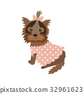 dog Yorkshire Terrier in clothes sitting 32961623