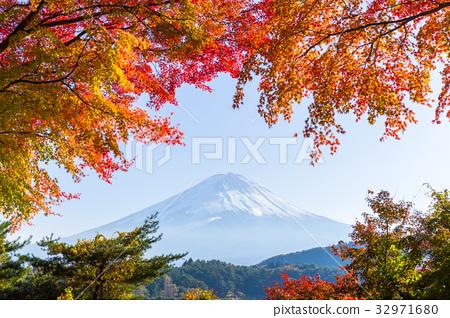 Mt.Fuji in autumn at Lake kawaguchiko 32971680