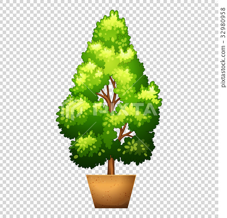 Green tree in clay pot 32980958