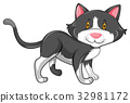 Little cat with gray fur 32981172