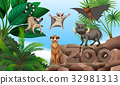 Different types of wild animals in the zoo 32981313