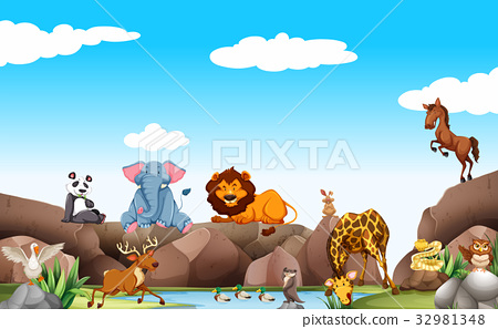 Scene with wild animals by the pond 32981348