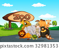 Zoo scene with many wild animals 32981353