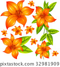 Wild flower in orange color 32981909