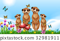 Four meerkats in the garden 32981911